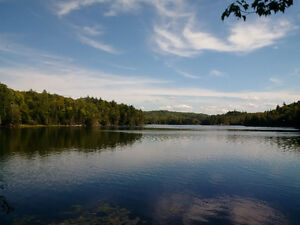 Grand Lake Lots - Cottage Country
