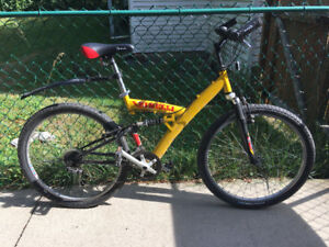 Bicycle  Minelli 15 speed mountain bicycle with dual suspension