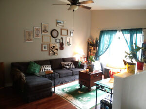 Roommate wanted: Room and private bathroom in house