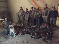 Fully guided goose hunts