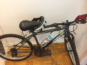Bike in an excellent condition