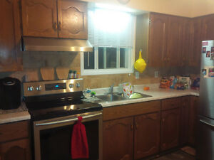 oak cabinets and laminate counter top
