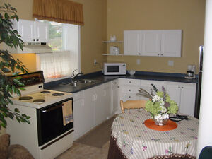Beautiful Suitewith wonderful view For Rent-Winfield