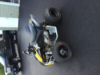2014 Can-Am DS 90X