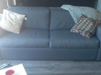 Pull Out Couch and Chair