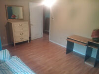 Room In West Riverview For Rent