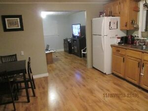 2 or 3 bdr house for rent. BayBulls Ocean View Available Now St. John's Newfoundland image 2