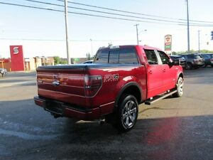 2013 Ford F-150 FX4 SuperCrew 5.5-ft. Bed 4WD Peterborough Peterborough Area image 2