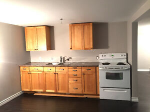 **RENOVATED CENTRALLY LOCATED 2BRM (HEAT&LIGHTS INCL)**
