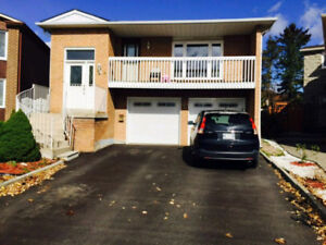 Beautiful renovated Home for rent/lease in Brampton