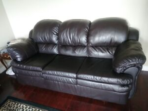 In EUC leather sofa and love seat