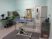 Be your own boss! Pet Grooming salon for sale