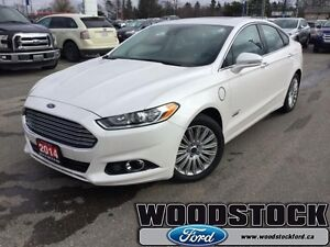 2014 Ford Fusion Energi Energi Titanium   - Leather Seats -  Blu