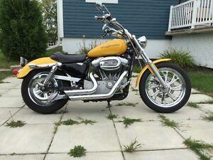 XL883C  Harley Davidson Sportser