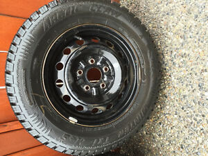 Set of 4 Studded Arctic Claw on Rims