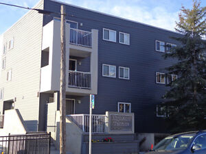 1 Bedroom Condo in Crescent Heights and Minutes Walk to Downtown