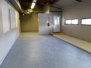 Newly Renovated Commercial Office Space + Optional Warehouse