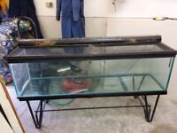110 gallon fish tank and steel stand