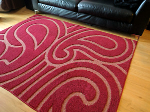 Large Area Rug Perfect Condition