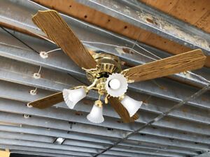 ceiling fans with light  (3 available)