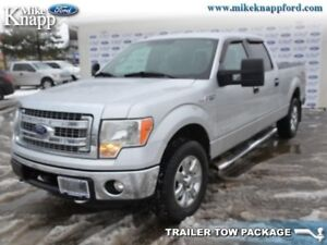 2013 Ford F-150   Rear View Camera