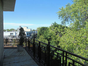 Beautiful 1400sqft Penthouse available now or Sept 1st!