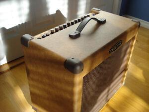 KUSTOM SIENA 65 ACUSTIC GUITAR COMBO Kitchener / Waterloo Kitchener Area image 3