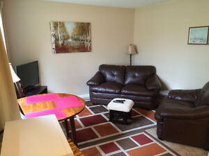 Furnished 1-BR Apartment in Fort Sask