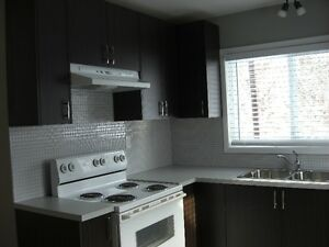 2 Bedroom Apt. $1100 Available Feb. 16 or Mar. 1