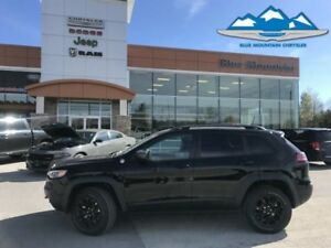 2019 Jeep Cherokee Trailhawk 4x4  ACCIDENT FREE, DEALER DEMO, LO