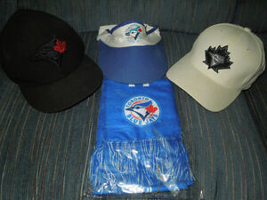 40982a24a1c4 TORONTO BLUE JAYS PACKAGE!