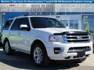 2016 Ford Expedition Limited | Sunroof | Low KMs