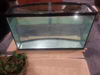 80 Gallon Oceanic Bow front Tank + stand