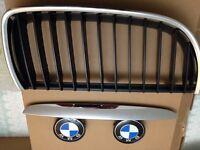 Genuine BMW 05-08 E90/91 3 series grilles.