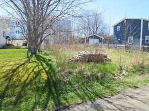 5 Fraizes Ave - Carbonear, NL - MLS# 1130508 St. John's Newfoundland image 2