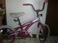 "** 16"" x 1.95"" Girl.s Bicycle**"