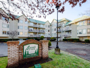 2 Bedroom Condo in Pitt Meadows