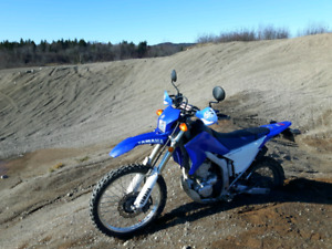 Street and Trail wr250r