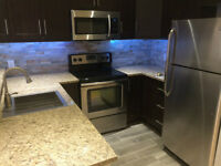 New Renovated Luxury Condo - July 1 (or before) -McGill Students