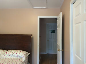 Large bright room for mature student/young professional from Jan Kingston Kingston Area image 7