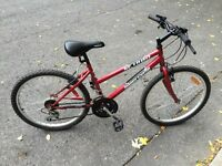 Red Bicycle SC 1800 Supercycle 18 Speed