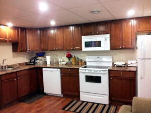 Nice 2BR furnished suite in Swallow Way, Eagle Ridge-March1st