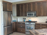 Brown Maple Cabinets and Patterned Laminate Countertops