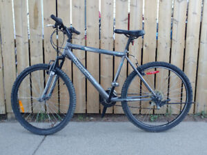 """Great Cond. 26"""" 18 Speed Large Vagabond Expedition Mountain Bike"""