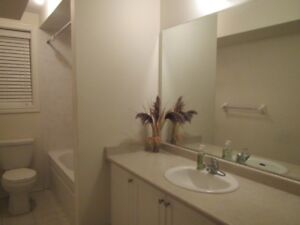 Very Bright one Bedroom Furnished Apt (completely above ground)