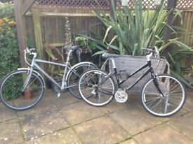 Lady & gents Gaint bikes