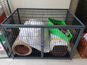 Ferret Nation Cage with ferret accessories