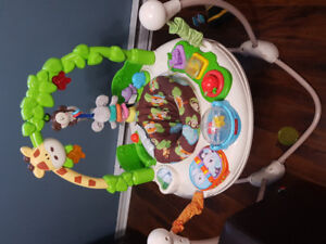 Baby item! Go wild jumperoo. Grows with them.