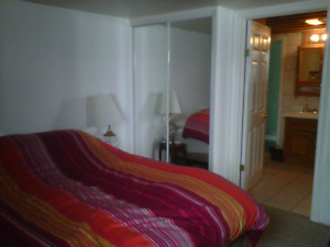 Walkout apartment for rent
