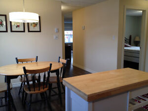 Furnished 2 Bedroom Apartment in Clarenville St. John's Newfoundland image 8